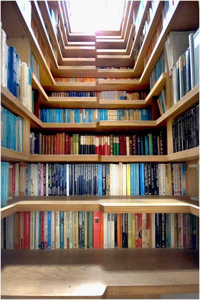 Bookshelf steps