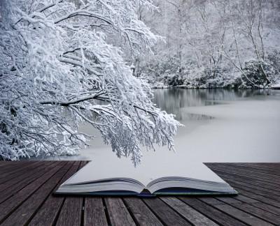 Snowbook